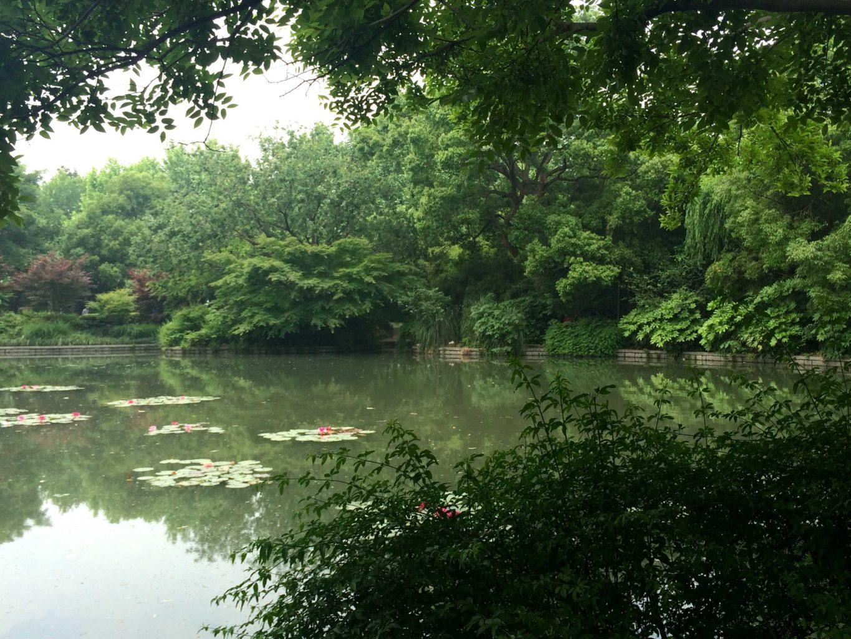 Botanical garden Hangzhou