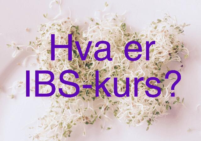 IBS-kurs