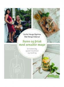 lavFODMAP-boken sunn og frisk